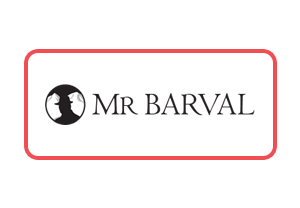 Web development services for MrBarval